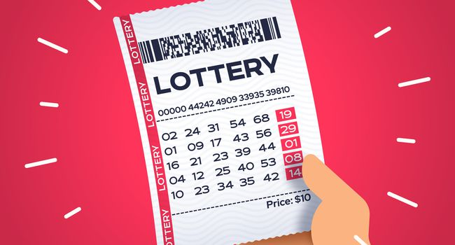 Person Holding a Winning Lottery Ticket
